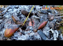 Liba H burn potatoes under rock in the forest