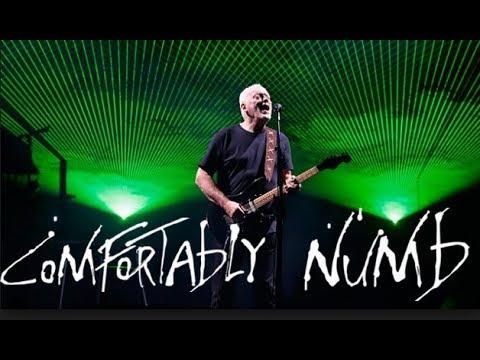 David Gilmour Comfortably Numb Royale Albert Hall 2006
