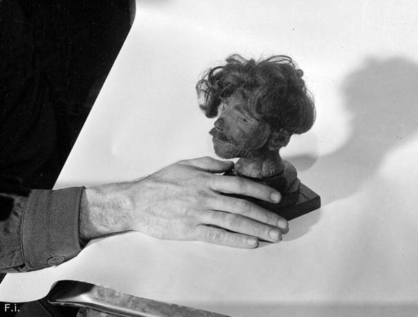 Представитель американского обвинения демонстрирует отсеченную голову человека, доставленную из концлагеря в Бухенвальде, где она стояла на столе начальника лагеря