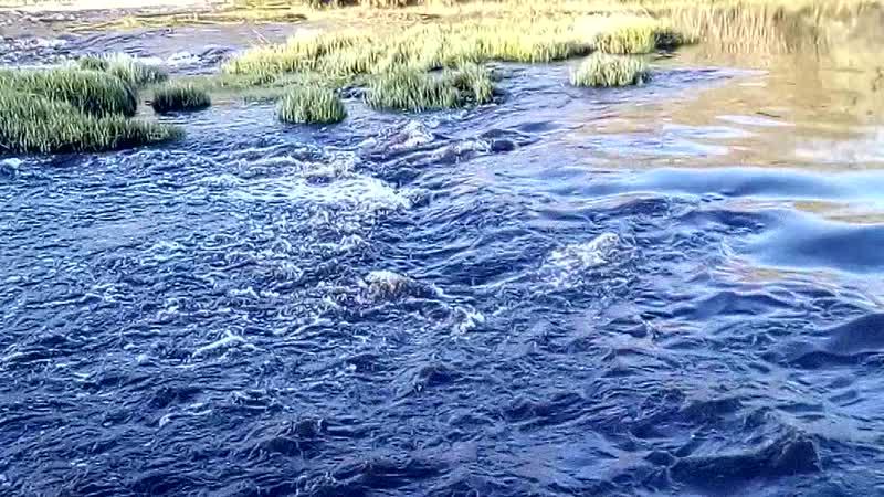 Саблино река Тосно 30 апреля 2019