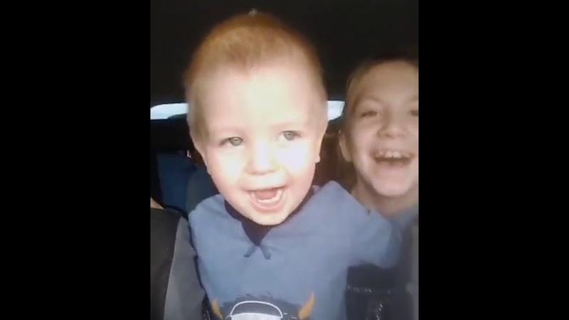 Рыцарь RS Страуса Наши дети поют Журавли по дороге в город Ржев СМЕНА РАСТЁТ
