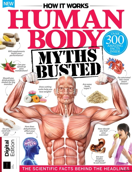 2019-08-01 How it Works Human Body Myths Busted