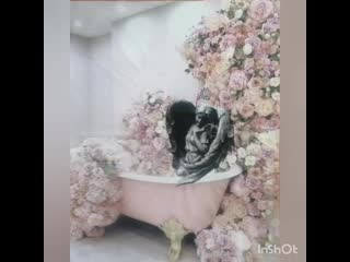 Женские мысли в ванной комнате/Female thoughts in the bathroom