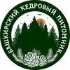 Башкирский кедровый питомник