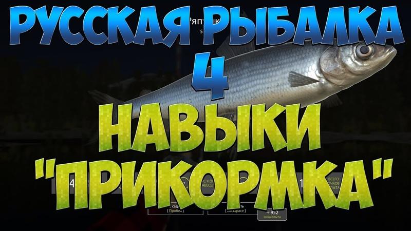 Русская Рыбалка 4: В помощь новичку/Навыки/Прикормка