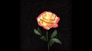 Bella's Craft/How to make Cherry parfait roses by crepe paper/Hướng dẫn làm hoa hồng bằng giấy nhún