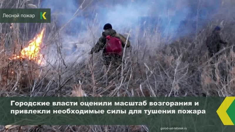 Неосторожное обращение с огнём и сильный порывистый ветер привели к чрезвычайной ситуации в Усть Лабинске