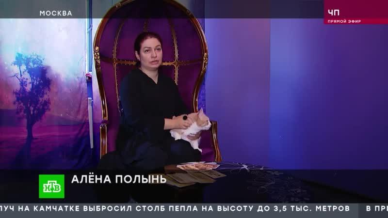 НТВ. Алена Полынь о жертвоприношениях