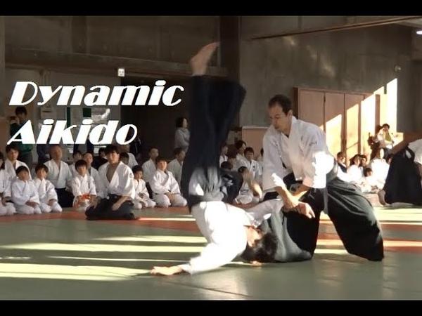 Dynamic Aikido Demonstration in Sendai, 2019