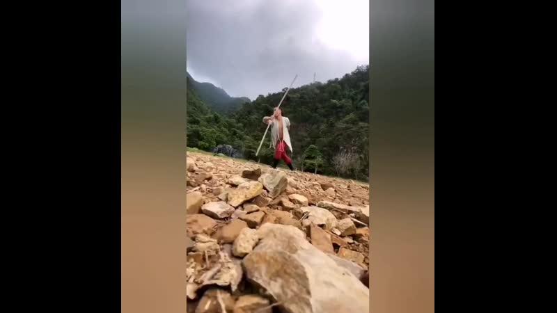 навык палки в традиционных китайских боевых искусствах