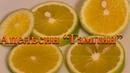 Апельсин Гамлин С Sinensis Hamlin дегустация