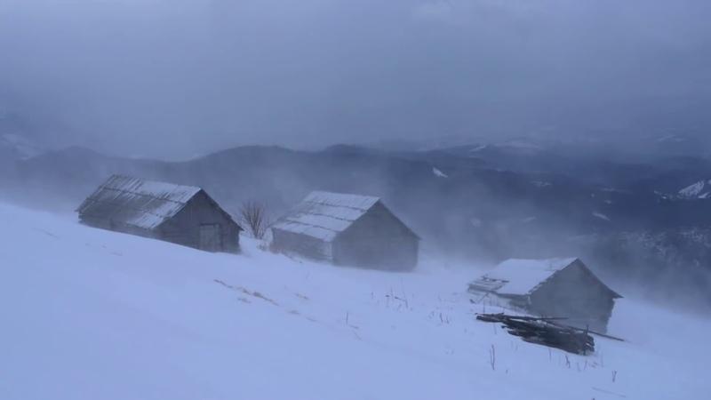 Зимняя штормовая атмосфера сильная снежная буря и ревущие ветра для релаксации