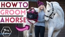 How to Groom a Horse What s in my Grooming Kit Tips for Grey Ponies AD This Esme