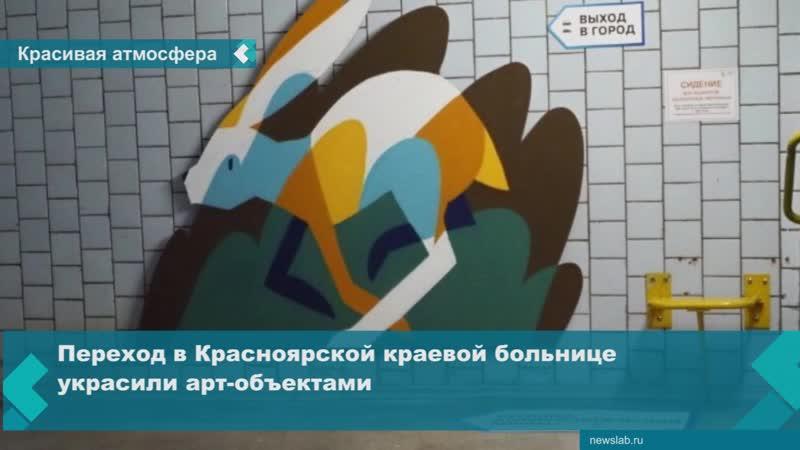 Переход в Красноярской краевой больнице украсили арт-объектами