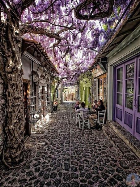 Красивая улица в деревне Моливос,  Греция