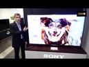 Sony TV 2019 : KD-85XG9505, KD-75XG9505, KD-65XG9505, KD-55XG9505 et KD-49XG9005