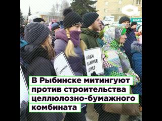 В Рыбинске люди протестуют против строительства комбината   ROMB
