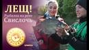 Лещ от Чемпиона! ТК Диалоги о рыбалке Народный проект. Беларусь