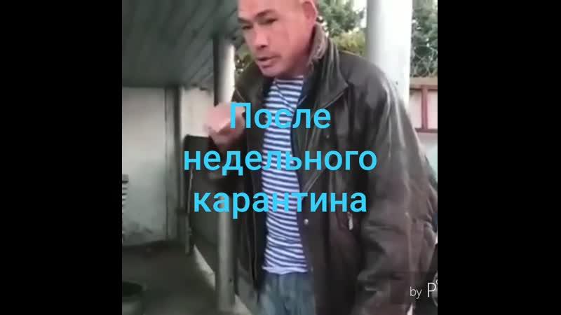 VIDEO 2020 04 01 17 52