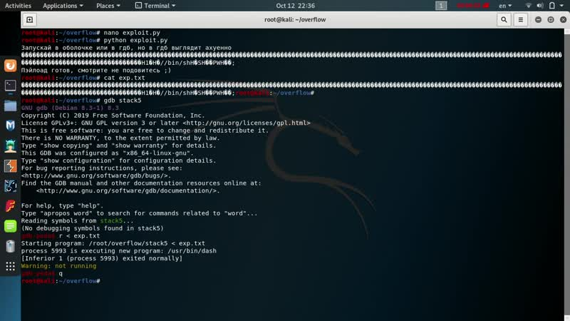 Exploit Development /bin/sh