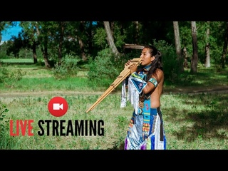 MUSIC OF THE ANDES🇪🇨 - SOUTH AMERICAN FLUTE (QUENA, QUENACHO, ZAMPOÑA)- ANDEAN FUSION - NATIVE MUSIC