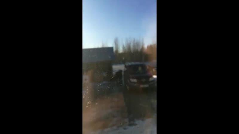 В ХМАО медведь пытался вломиться в жилой дом где находилась семья