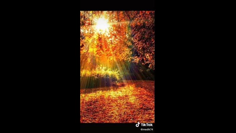 Осень разлучает нас