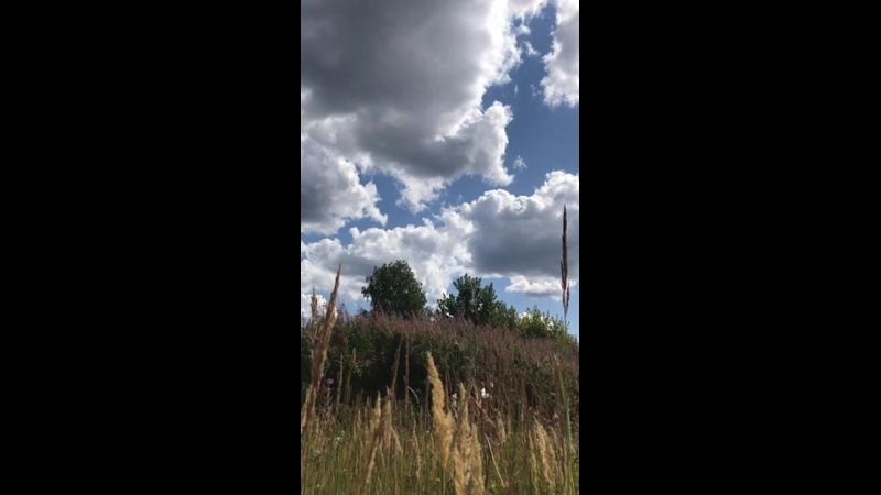 Видео от Марины Лаврентьевой
