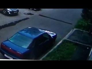 Video by Что за Новости