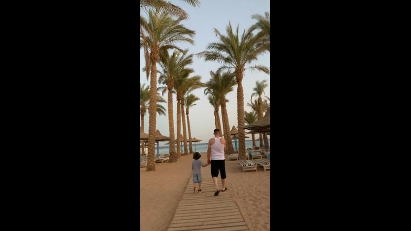Видео от Светланы Бауэр