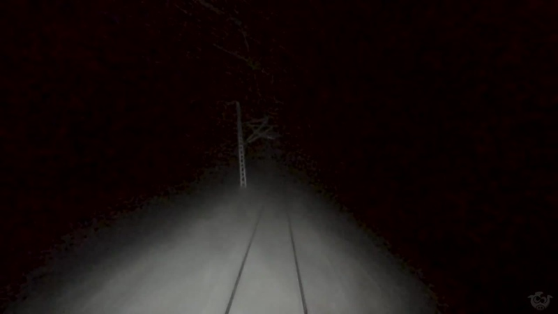 TRAIN DRIVERS VIEW Low visibility and plow action at Finse
