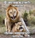 Фотоальбом Олега Шилоносова