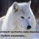 фото из альбома Ангелины Андреевой №2