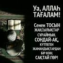 Персональный фотоальбом Olzhas Kasenov