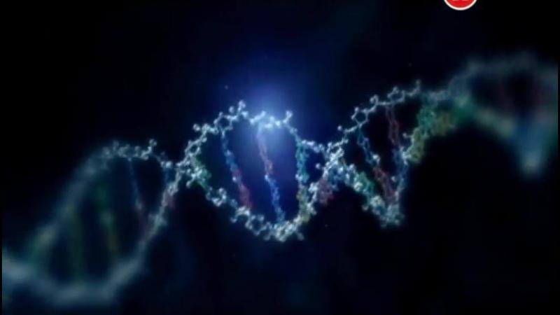 Гений Великобритании ученые которые изменили мир 05 Задавая главные вопросы 2010