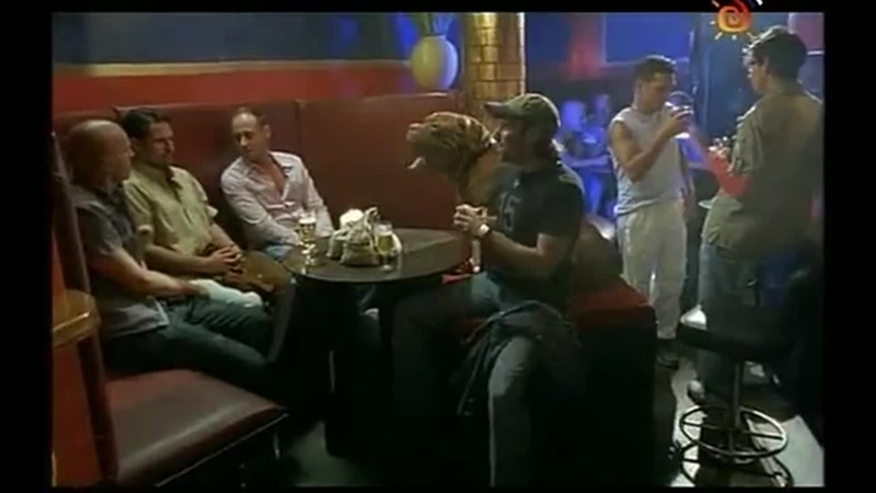 ТС Домик с собачкой 8 серия 2002г