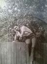 Личный фотоальбом Людмилы Бредихиной