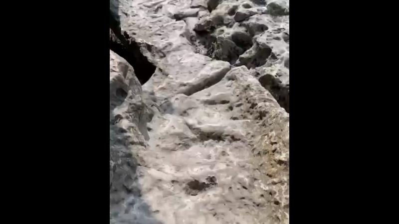 Видео от КРЫМ