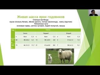 """Секция 2. """"Казахские мясные скороспелые полутонкорунные овцы в производственных условиях фермы «Жайсан-агро-инвест»"""""""