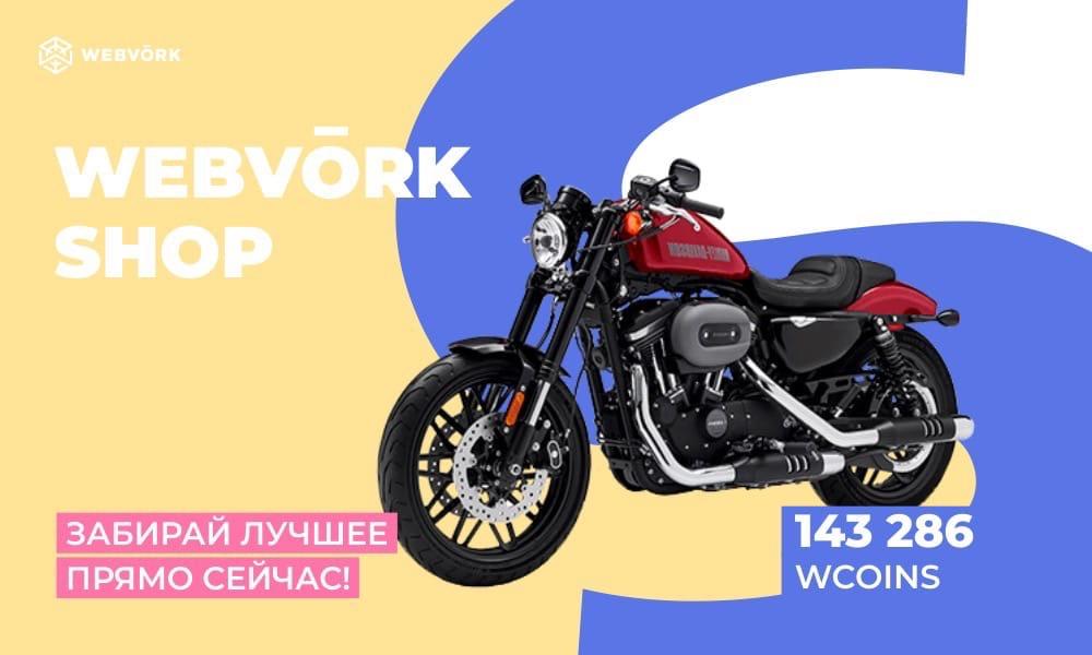 XXf9qpqu_kw.jpg?size=1000x600&quality=96