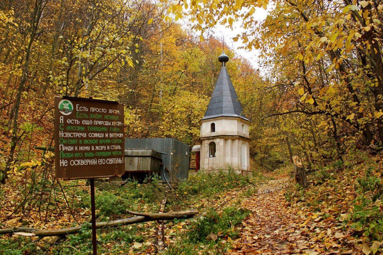 Афиша Самара Пеший поход по Ширяевской долине 22 ноября