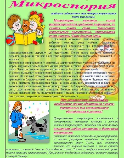 Микроспория или «стригущий лишай» как уберечь детей и взрос