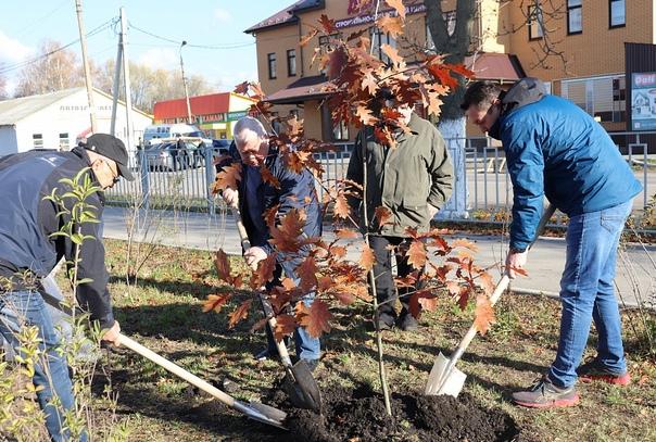 ✅ В Донском ветераны и полицейские высадили деревь...