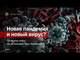 Новая пандемия и новый вирус? По всему миру бьют тревогу из-за неизвестных болезней