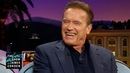 Who Is Arnold Schwarzenegger's Pony and What Does She Do