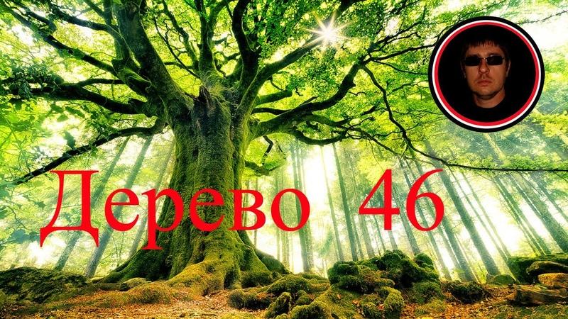 Ответы на вопросы 14 Фетискины Дерево 46 генеалогия родословная