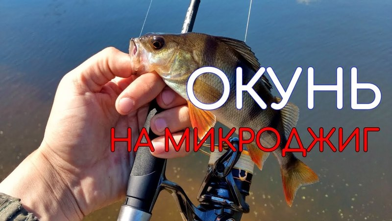 СТОЛЬКО ОКУНЯ Я ЕЩЕ НЕ ЛОВИЛ | ВОТ ЭТО РЫБАЛКА | МИКРОДЖИГ НА НЕБОЛЬШОМ ПРУДУ - Рыбалка со stigan'ом