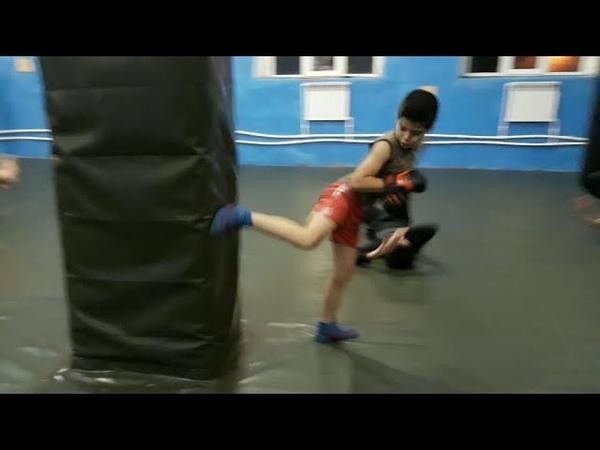 Тренировка в бк Барракуда