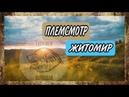 Алабай / Работа с породой / Племсмотр питомника