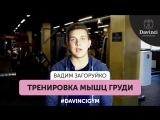 #DavinciGym Вадим Загоруйко.Тренировка мышц груди.